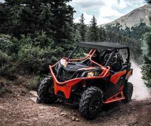Can-Am Maverick Trail 800 DPS 2020